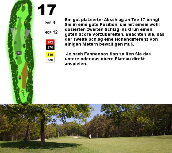 Tee17